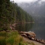 kouzlo šumavské přírody